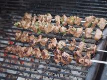 Kabobs de la carne de venado Foto de archivo libre de regalías