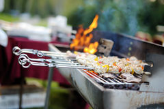 Kabobs grilled with vegetables on metal skewers Royalty Free Stock Photo