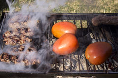 Kabobs and tomatoes on a charcoal grill Stock Images