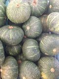 Kabocha Royalty Free Stock Image