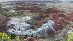 Kachina punkt Przegapia w Arizona ` s Malującym Pustynnym parku narodowym fotografia stock