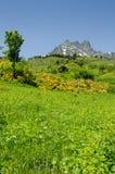 Kackar National Park, Turkey Royalty Free Stock Photo