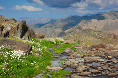 Kackar trek, Turkey. Mountains terrain with rocks and flowers and cloudy skies, Kackar trek, Turkey stock image