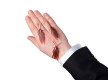Kackerlackor på handen Royaltyfri Foto