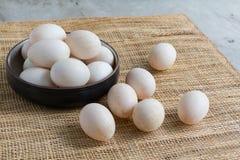 Kaczek jajka Obrazy Stock