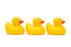 kaczek trzy odizolowane Obrazy Royalty Free