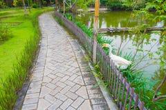 Kaczka Obok Footpath Obraz Royalty Free