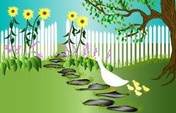 kaczka ogród obraz stock