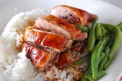 Kaczka pieczeni ryż Zdjęcia Royalty Free