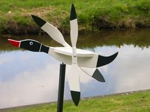 kaczka wiatrowskaz Obrazy Royalty Free