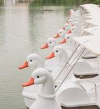 Kaczki łódź Fotografia Royalty Free