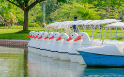 Kaczki łódź Fotografia Stock