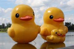 Kaczki gumy rzeźby zdjęcie royalty free