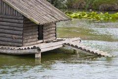 kaczki jeziora schronienia Zdjęcia Stock