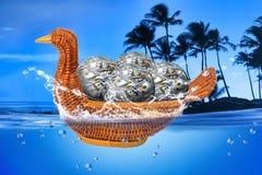 Kaczki koszykowy pełny pieniądze piłki zdjęcie royalty free