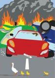 Kaczki krzyżuje drogę powoduje samochodowego wypiętrzają up Fotografia Royalty Free