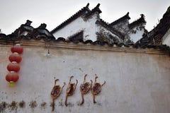 Kaczki mięso wieszał na ścianie dla suchego zdjęcie stock