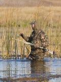 Kaczki polowanie Zdjęcia Stock