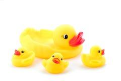 kaczki rodziny zabawka Fotografia Stock