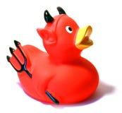 kaczki zło Obrazy Royalty Free