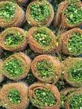 Kadayif, dessert del Medio-Oriente Immagini Stock Libere da Diritti