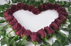 Kader in het vormhart van rode rozen met waterdruppeltjes op een witte achtergrond Royalty-vrije Stock Foto's
