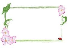 Kader met appelbloem en onzelieveheersbeestje Stock Afbeeldingen