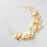 Kader met beige rozen Stock Fotografie
