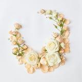 Kader met beige rozen Stock Afbeeldingen