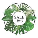 Kader met bladeren van tropische installaties Kader voor tekst met exotische bladeren Vector illustratie royalty-vrije illustratie