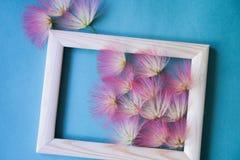 Kader met bloemen Stock Foto