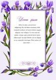 Kader met de bloemen van iris stock illustratie