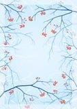 Kader met een achtergrond van blauwe silhouetten van takken Stock Fotografie