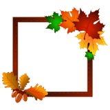 Kader met esdoornbladeren en eikels bruin, oranje, geel en zelkny kleur stock illustratie