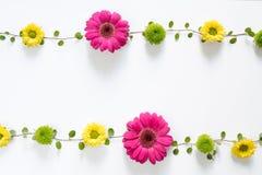 Kader met kleurrijke bloemen Royalty-vrije Stock Foto