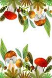 Kader met paddestoelen stock illustratie