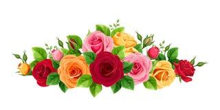 Kader met rode, roze, oranje en gele rozen Vector illustratie stock afbeeldingen