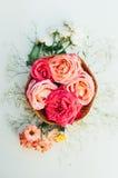 Kader met roze die rozen, takken, bladeren op witte backg worden geïsoleerd Stock Afbeeldingen