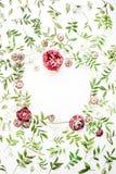 Kader met roze rozen, takken, bladeren en bloemblaadjes Royalty-vrije Stock Fotografie