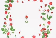 Kader met rozen Stock Fotografie