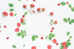 Kader met rozen Royalty-vrije Stock Fotografie