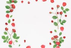 Kader met rozen Stock Foto's