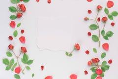 Kader met rozen Royalty-vrije Stock Foto's