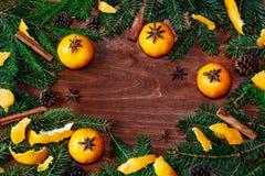 Kader met sparrentakken, mandarijnen, kegels, kaneel en Royalty-vrije Stock Afbeeldingen