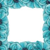 Kader van blauwe anemonen Stock Fotografie