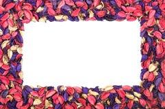 Kader van bloembloemblaadjes Stock Afbeelding