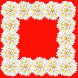 Kader van bloemen Royalty-vrije Stock Afbeelding