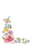 Kader van bloemen Stock Foto's