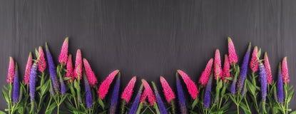 Kader van bloemen, zwarte raad als achtergrond Stock Afbeeldingen
