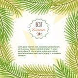 Kader van de beste zomer van palmtakken Achtergrond Royalty-vrije Stock Afbeelding